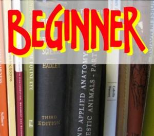 O que todo aluno iniciante de inglês deve saber?