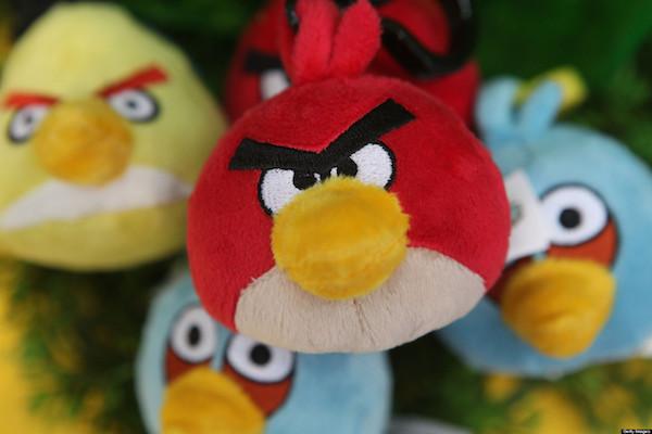 Expressões com a Palavra Bird