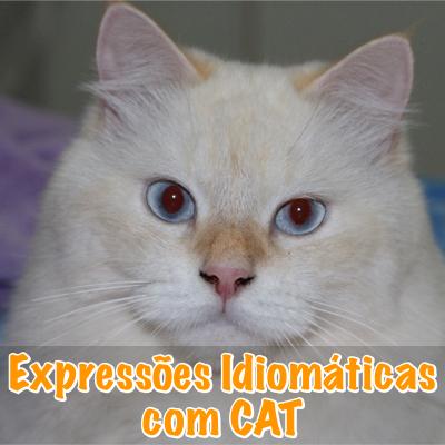 Expressões Idiomáticas com Cat